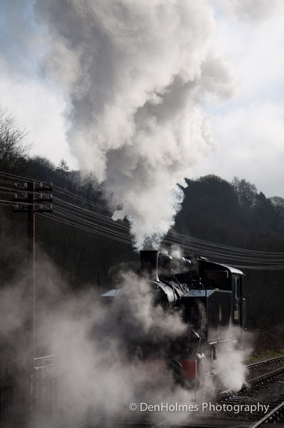 2010_Winter_Steam_Gala-33