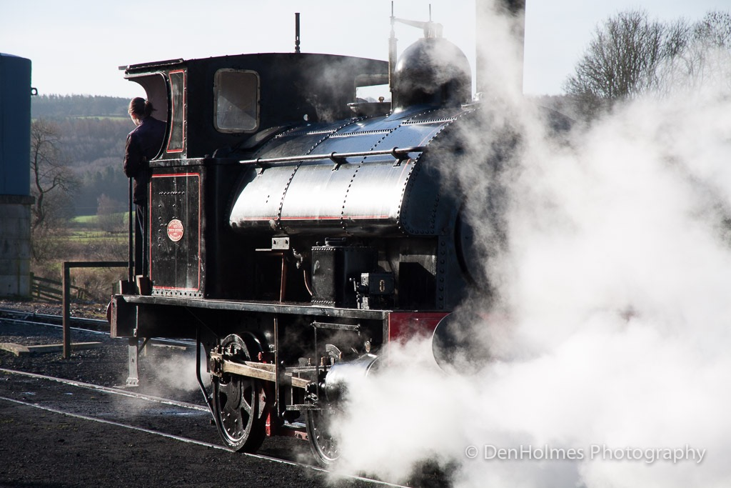 2014_Winter-Steam_(12_of_28)